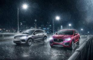 Jaguars Rain